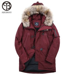 6ad5327d6683 Asesmay brand 90% white duck men down jacket men s winter coat thick warm goose  feather hoodies fur collar casual winter jackets C19010801