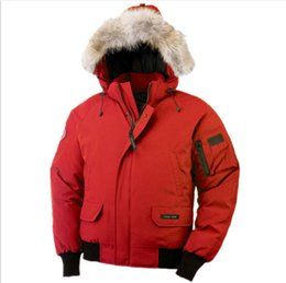 Chaqueta libre del envío de dhl online-Envío libre de DHL Al aire libre Espesar a prueba de viento caliente pinzas de cuello de piel de manga larga Putin Short Canadian Goose Down Jacket chaqueta de los hombres