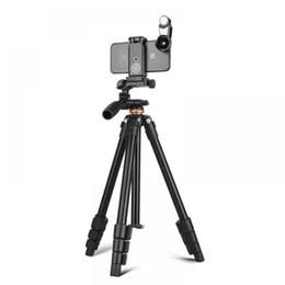 2019 professionelles stativ für dslr QZSD Q160A Professionelles Mini-Stativ aus Aluminium für digitales Video-DSLR-Kamerastativ mit Panhead Mini günstig professionelles stativ für dslr