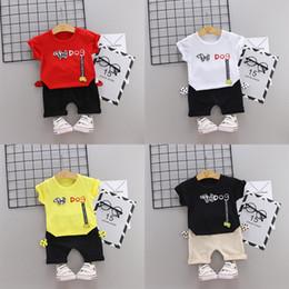 Collari di cane da ragazzo online-Girocollo estivo in cotone stile tendenza di tendenza del 2019 Cane con maniche corte e pantaloncini due pezzi per bambini e bambine