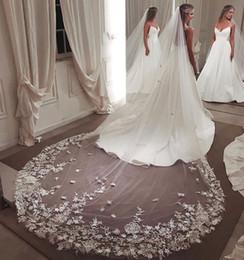 Argentina Elegantes velos de novia de encaje con borde cortado 3M de longitud de catedral larga Una capa 3D con velo de novia con peine para mujeres Accesorios para el cabello Suministro