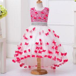 Новые девушки принцесса платье вечернее платье дети показывают pettiskirt девушка аппликация хвост свадебное платье от