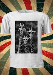 occhiali da giraffa Sconti Occhiali da sole Giraffe Funny Giraffa Camelopard T Shirt Uomo Donna Unisex 1821 Mens T Shirt in cotone manica corta stampa