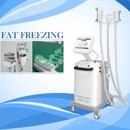 Profesional 3 manijas doble chin treatent láser frío frío crioterapia terapia congelación grasa congelación pérdida de peso máquina de adelgazamiento desde fabricantes