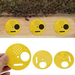 porte de la boîte Promotion Outils Apiculture Ventilation Box 12 pcs / set plastique Ruche Nuc Boîte portes d'entrée Équipement Apiculture