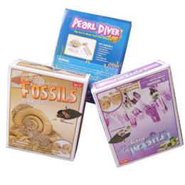 Deutschland Archäologische Spielzeug Marine-Shell im Jahr 2019 fossile Perle Diamant Perle archäologischen Pirat archäologisches Pharao Ägypten UPS Versorgung