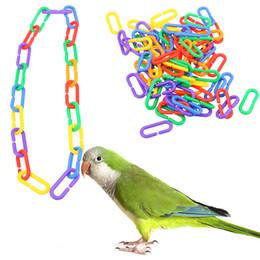 2019 loros de plastico 100 unids / lote plástico loro juguetes C-clips ganchos cadena C-enlaces Sugar Glider rata loro pájaro piezas de juguete Parakeet Bird accesorios rebajas loros de plastico