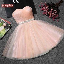 2019 розовая вечерняя короткая одежда JaneyGao выпускные платья Короткие для женщин официально партия вечера мантий голубой Тюль смазливая Элегантный дизайн моды платье розовый красный 9 цветов скидка розовая вечерняя короткая одежда
