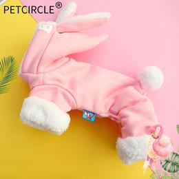 Köpek giysileri pet kedi kostüm Teddy bear Xiong Bomei sonbahar ve kış kalınlaşma artı kadife tavşan tavşan sıcak dört bacaklı giysi nereden