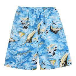 Pantalon de plage à séchage rapide pour hommes, grande taille, shorts amples et minces, pantalon de sport et de loisirs ? partir de fabricateur