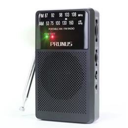 2019 antena de cobre Radio portátil DSUN FM / AM PRUNUS ANJAN-A166 con antena de cobre ultra larga, excelente recepción, perilla de sintonización con indicador de señal. antena de cobre baratos