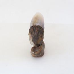 2374 28g Suiseki Natural Unkolish Gobi Beads Quarzo Agata Pietra Decorazione da tavola Minerali Campione Collezioni Acquari da