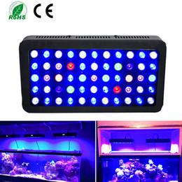 2019 levou luzes coral recife LED aquário luz pode ser escurecido Coral Reef Led acende 165W para Fish Tank, Full Spectrum Coral Reef cresce claro Adequado para 55-75 galão Freshwat levou luzes coral recife barato