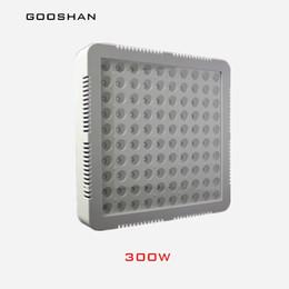 venta al por mayor 300W Spectrum Grow Light Kit RedBlue LED para plantas de interior que crecen y florecen desde fabricantes