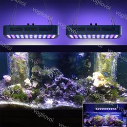 2019 led dimmable levam luzes Led Spectrum Full Aquarium Grow lights 165 W 55LED Regulável Para Aquário Aquário Marinho Decoração Profissional com Lente DHL led dimmable levam luzes barato