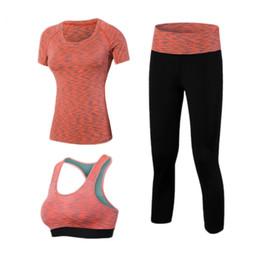 футболки с длинными рукавами Скидка OLOEY быстро сухой йога Набор 3 шт тренировки туго сексуальный топ спортивный костюм тренажерный зал работает рубашки леггинсы брюки спортивный костюм спортивный женский бюстгальтер #855007