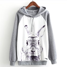 Trainingsanzug kaninchen online-Harajuku Casual tyle Women Sweatshirt Rabbit Print Hoodies Loose Long Sleeve Pullover Tracksuit