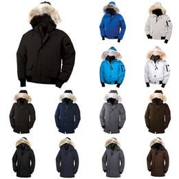 Fourrure de raton laveur d hiver d hommes Veste Designer Vestes en duvet d oie des hommes Bomber Nord Parka Hommes Manteau coupe vent Manteaux chaud
