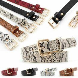 Snake Skin Print Belts For Women Gold Square Pin Buckle Waistband PU Leather Belt Women Snake Pattern Dress Jeans Leather Belt