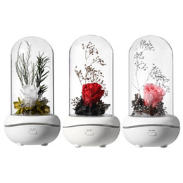 Lâmpada difusa on-line-Eterno Rosa Aromaterapia Difusor de Óleo Essencial Aroma Aroma Humidificadores 7 Cor LED Night Light Office Home Carro Decoração de Carro Night Lamp Gift