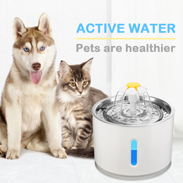 2020 alimentador eléctrico Automatic Cat Fountain Pet Beber água potável Dispenser Dog LED elétrica Fountain Cat Feeder Bebida Filtrar por USB alimentador eléctrico barato