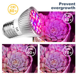 2021 le migliori luci crescono Le migliori lampade Phyto Phyto Full Spectrum E27 LED Plant Light Grow Lamp E14 LED per le piante 18W 28 W FitoLampy Tenda a effetto serra Bulbi UV all'ingrosso