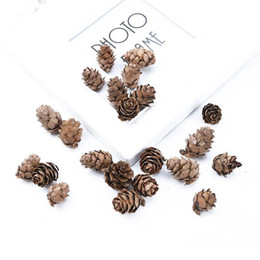 Natural dried pine cones hair piece