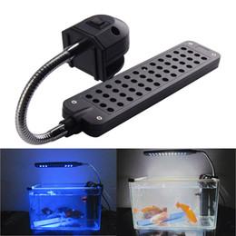 Luces led para acuarios de arrecife online-Venta caliente DC12V 3.5W 48LED Acuario Lámpara de Luz Para Arrecife de Coral animales acuáticos UE Tanque de Peces