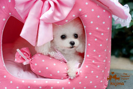 Wholesale Cat Beds Free Shipping - Free shipping 2 SIZE Princess Pet bed pet house dog house Collapsible pet pink House for Pet Dog Cat Luxury pet house WY127