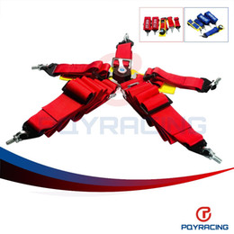 Wholesale Race Seat Fia - PQY STORE-New type FIA 2018 Homologation 3 inches 5Point SPA Style Racing Seat Belt RACING HARNESS(Red,blue,available) PQY-SB51