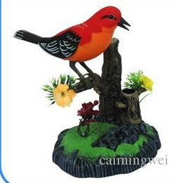 Wholesale Toy Birds Sing - Wholesale-New Arrival 1set Free Shipping,learning to speak ,parrot,singing birds voice control,talking electronic pet,recording simulation