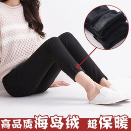 Wholesale Warm Maternity Leggings - Maternity new autumn and winter plus thick velvet leggings pregnant women care belly warm pants stretch pants casual trousers feet