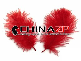 Wholesale Good Craft Flowers - Leading Supplier CHINAZP Crafts Factory 15~20cm (6~8inch) Length Good Quality Dyed Red Ostrich Plumage Feathers for Decoration Centerpieces