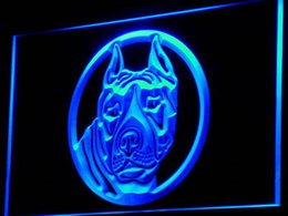 Wholesale Bulls Signed - Wholesale-i692-b Staffordshire Bull Terrier Staffie Dog LED Neon Sign Wholesale Dropshipping