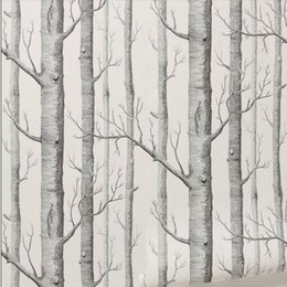 Wholesale Black White Modern Wallpaper - Birch Tree pattern non-woven woods wallpaper roll modern designer wallcovering simple black and white wallpaper for living room