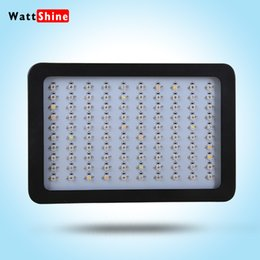 Wholesale Plant Lights For Sale - Whole hot sale best design 300w Led Grow Light Hydroponic Full Spectrum 6 bands growth lamps Best for Plants, flower growing