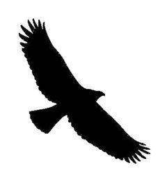 Wholesale eagles car stickers - Wholesale Vinyl Decals Car Stickers Glass Stickers Scratches Stickers Wall Die Cut Bumper Accessories Jdm Tribal Eagle Bird Hawk