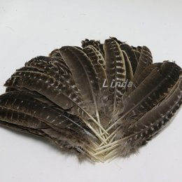 Piume di tacchino online-50pcs Wild Turkey Rounds Quill Feathers 25-30cm Natural Wild Turkey Feathers