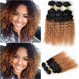 """Wholesale Affordable Kinky Curly Hair - Two Tone Ombre Deep Curly Hair Extension Weft,Durable 10-30"""" Brazilian Virgin Kinky Curly Human Hair Ombre Weaves,Affordable One Bundle Deal"""