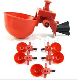 Wholesale Bird Drinkers - Automatic Bird Coop Feed Poultry Chicken Fowl Drinker Water Drinking Cups
