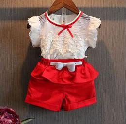 2019 twinset kleidung Neue 2015 Sommer mode Mädchen spitze weiß blusen + shorts kleidung set kinder kleidung sets twinset TZX144 günstig twinset kleidung