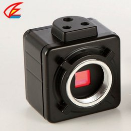 Wholesale Eyepiece Ccd - Wholesale-5MP USB CCD Camera Electronic Digital Eyepiece Microscope Free Driver High Resolution Camera for Win10  7 XP   win8   win10