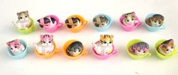Wholesale Fairy Figurines - 12 pcs cute kitty in cup miniatures lovely cat animals fairy garden gnome terrarium decoration crafts figurine