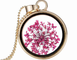 Wholesale Vintage Rose Sweater - Vintage Newest Arrived Glass Box Dried Flowers Round Pendant Necklace Rose Red Flower Pendant Sweater Chain YPQ0154
