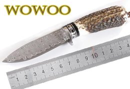 Wholesale Damascus Knife Antler - 02276 Damascus Volume Pattern Antlers Fixed Blade Knife High-end Premium Straight Knives Camping Tactical Collection Gift Fruit Peel Tools