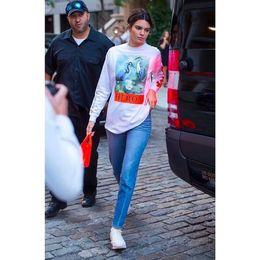 Wholesale Animal Sweater Women - 18SS HERON PRESTON Crane Print Sweater Women HIP HOP Steert Tide Hit Color Letter Plus Size Loize Long Pullover For Girl