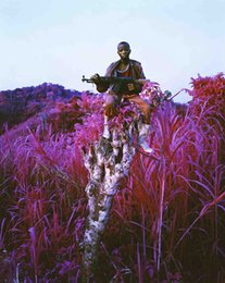 Wholesale American Poster - Free Shipping Richard Mosse Infra Higher Ground Art Print Poster 24x36 Art Posters Prints Home Decor Wall Paper 16 24 36 47 inches