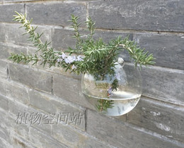 Wholesale Fishing Globe - Wall fish tank  air plants wall half globe indoor plant terrarium vase  wall decoration home decor
