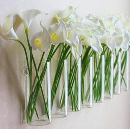 2019 современные подставки для растений Современный дизайн стены стены стеклянные вазы цветочные горшки кашпо украшения дома цветочные вазы