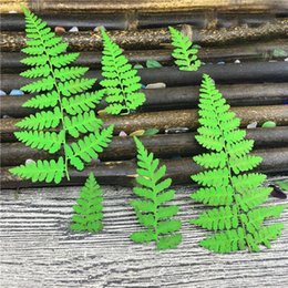 Wholesale Children Handicraft - Pressed Leaves Green Color 3 Different Size For DIY Children Handicraft Material